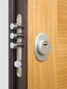 Saugios šarvo durys